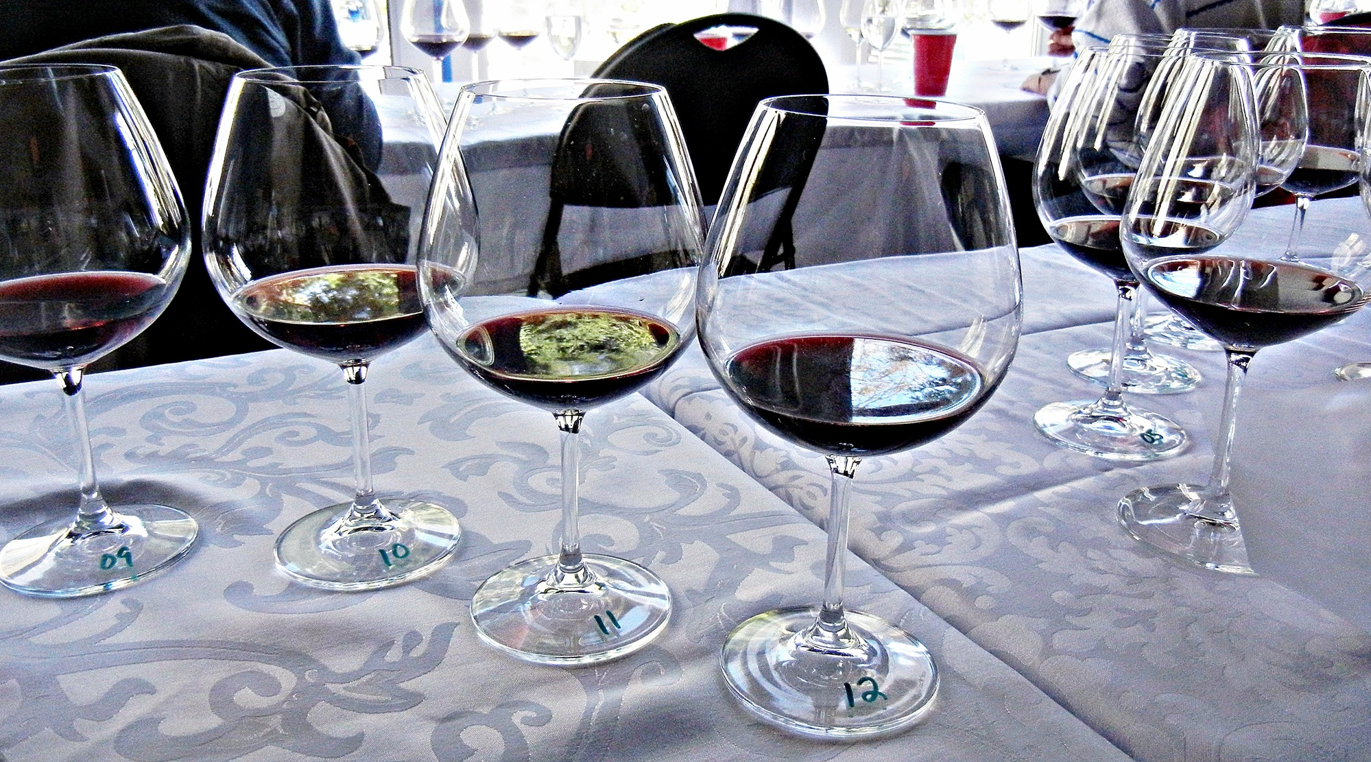 Averill Creek Pinot Noir Vertical Tasting Glasses