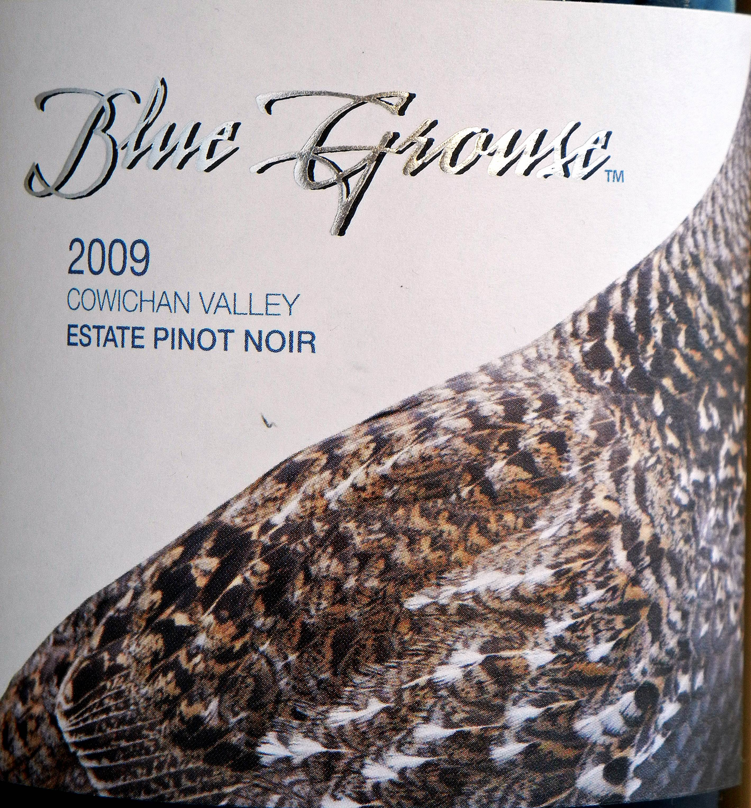 Blue Grouse Pinot Noir 2009 Label - BC Pinot Noir Tasting Review 26