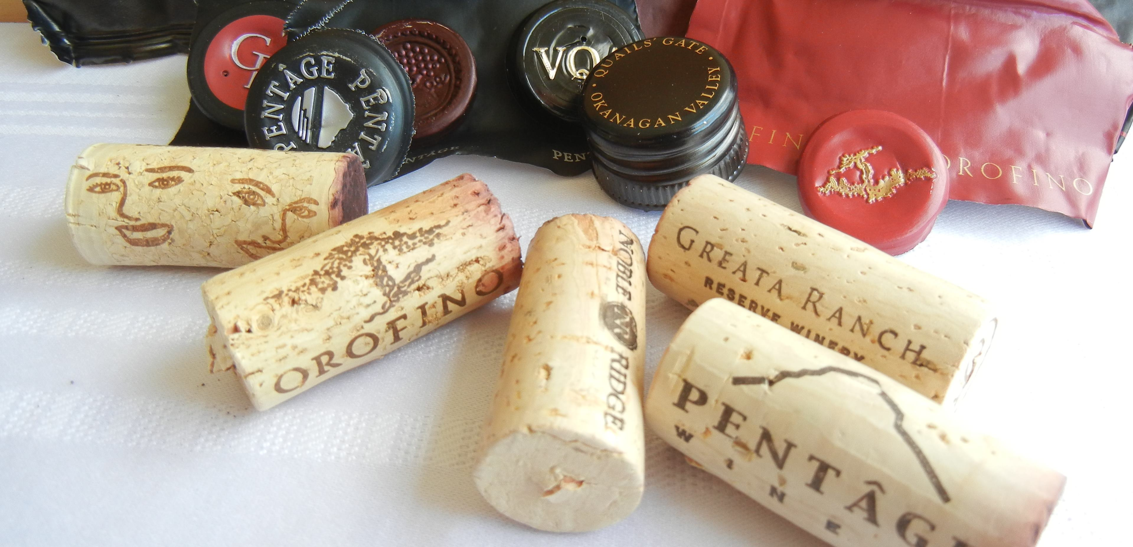Caps Corks Capsules 2007 BC Pinot Noirs Tasting 8
